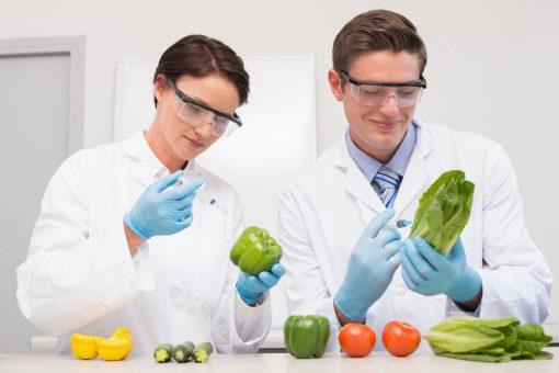 DNA: Diät und Sport